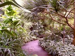 Tropical Landscape Design by Basic Principles Of Landscape Design
