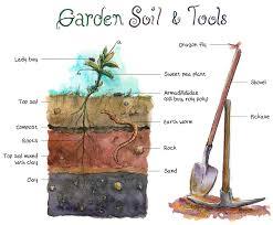 olive garden round rock gardensdecor com