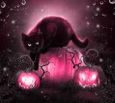 pink halloween background free halloween cats for all album on imgur