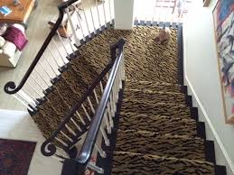 Leopard Print Runner Rug Best Of Zebra Runner Rug With Animal Print Runner Rug Rugs