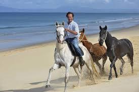 why portugal u0027s wild comporta coastline should be your summer sanctuary