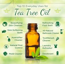 using tea tree to treat a yeast infection doterra