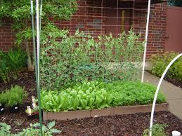 garden site selection u2013 the garden professors