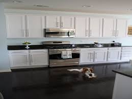 simple home design kitchen cool kitchen cabinets napolis style home design simple