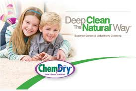 carpet cleaning naples chem carpet cleaning by warren