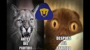 Memes De Pumas Vs America - memes por la derrota de pumas vs am礬rica 0 1 j 7 22 02 2015 youtube
