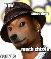 Snoop Meme - i pinimg com 236x 2b 90 d2 2b90d2eb618f9efb6544851