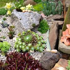 uncategorized make a shady rock garden hgtv rock gardens designs