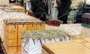 used sukkah for sale sukkot architecture nyc s sukkahs come in all shapes sizes and