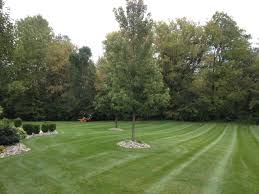sylvania landscaping landscape tree services and lawn mowing