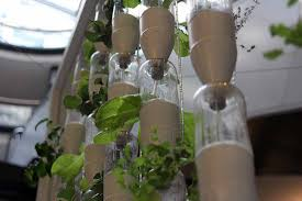 indoor kitchen garden ideas diy indoor herb garden ideas indoor plants expert