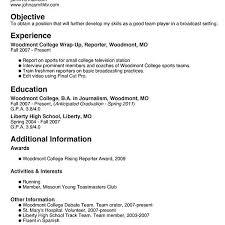 simple basic resume template 1 resume basics resume basics 2013