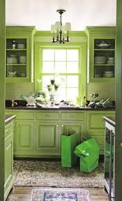 Lime Green Kitchen Rug 36 Best Lime Green Kitchen Ideas Images On Pinterest Kitchen