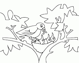 20 free printable bird coloring pages everfreecoloring