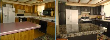Weird and Cheap Kitchen updates that you can do yourself  Sold By