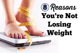 8 reasons why you u0027re not losing weight sparkpeople