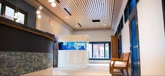Efd Home Design Group by Testimonials Blue Frog Construction Llc