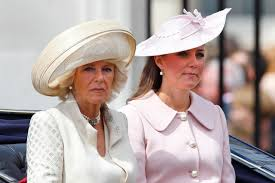 camilla made prince william dump kate middleton royals biographer
