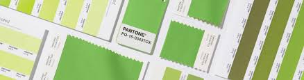 go green how to wear the pantone color of 2017 the shops at