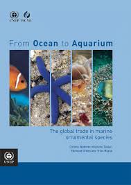 from to aquarium the global trade in marine ornamental