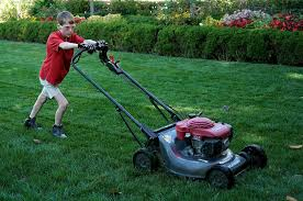 11 year old virginia boy fulfills wish to mow white house lawn