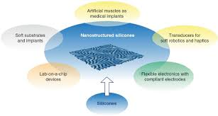 biomimetic nanostructures for the silicone biosystem interface