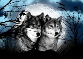 moon wolves by blanco lobo12 on deviantart