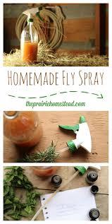 homemade fly spray recipe the prairie homestead