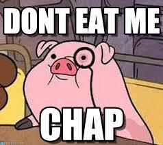 Meme Eat - dont eat me pig meme on memegen