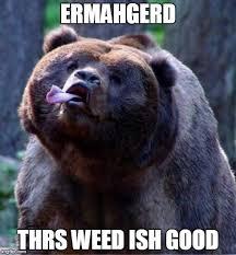 Ermahgerd Meme Creator - derpy bear meme generator imgflip
