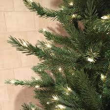 stein u0027s garden u0026 home neuman tree douglas fir 7 5 ft w clear