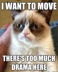 Internet Drama Meme - i want to move there s cat meme cat planet cat planet