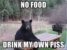 Funny Bear Memes - 22 best bear grylls memes smosh