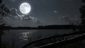 full moon night landscape with forest lake stock video footage