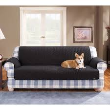 Throws For Sofa by Cotton Duck Pet Throw Sofa Cover At Brookstone U2014buy Now