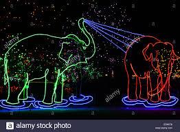Zoo Lights Coupons by Christmas Lights Shaped Like Elephants Denver Zoo Lights Denver