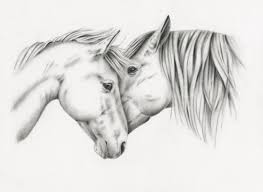 charcoal sketch horse drawing giclee print charcoal drawing