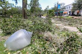 hurricane irma leaves damage in its wake winter park maitland