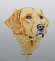 Glynis Barnes Mellish Glynis Barnes Mellish Paints This Loveable Spaniel See It Now On