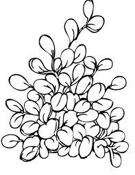 unique comics animation herbs coloring pages