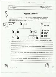 genetic worksheet free worksheets library download and print