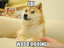 Lol Wut Meme - lol wut r u doing doge make a meme