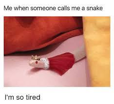 I M So Tired Meme - me when someone calls me a snake i m so tired meme on esmemes com