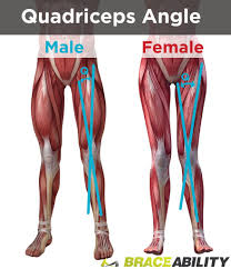 Lateral Patellar Ligament Kneecap Instability Medial Vs Lateral Patellar Dislocation