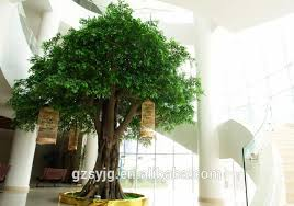 ficus tree price ficus tree price suppliers and manufacturers at