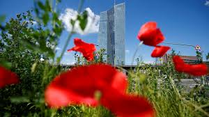 ecb leaves rates unchanged in july as it happened