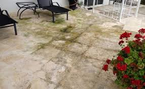 Cleaning Concrete Patio Mold Limestone Restoration Cleaning Sealing Polishing Services At