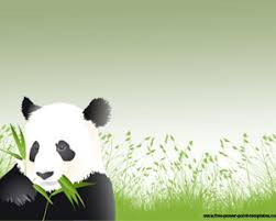 panda powerpoint template is a free panda background for
