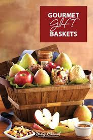 same day fruit basket delivery gift baskets brisbane same day delivery fruit basket info kon kon info