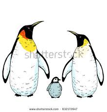 vector penguin baby illustration hand drawn stock vector 628579616